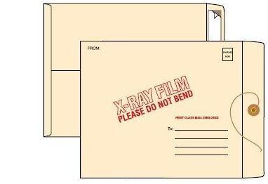 Standard Mailing Envelope